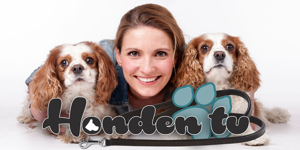 Promo HondenTV Honden TV RTL4 Seizoen 2